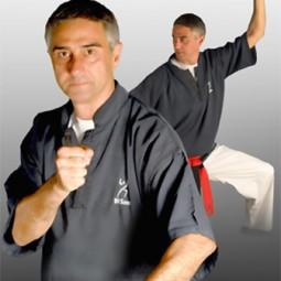 kung-fu-disom-lugo-gimnasio-di-som-lugo