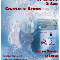 Cartel campeonato interprovincial de kung-fu